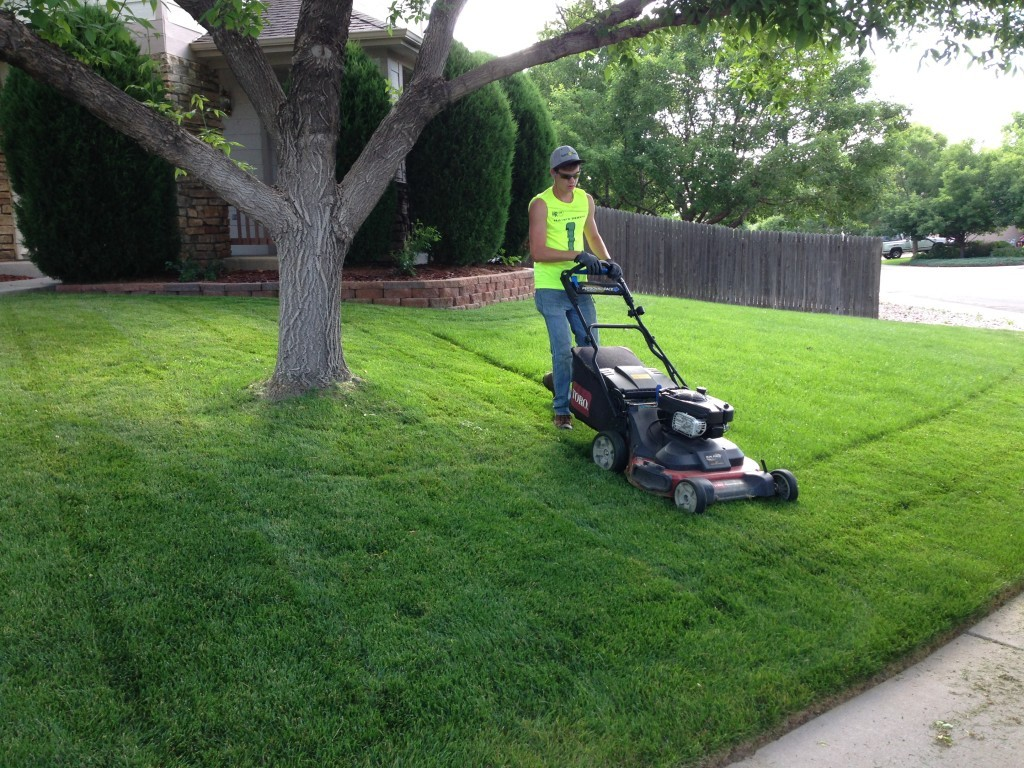 Lawn Service-Corpus Christi TX Landscape Designs & Outdoor Living Areas-We offer Landscape Design, Outdoor Patios & Pergolas, Outdoor Living Spaces, Stonescapes, Residential & Commercial Landscaping, Irrigation Installation & Repairs, Drainage Systems, Landscape Lighting, Outdoor Living Spaces, Tree Service, Lawn Service, and more.